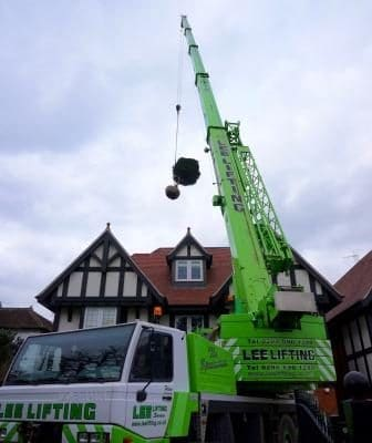 lifting large plants over a house